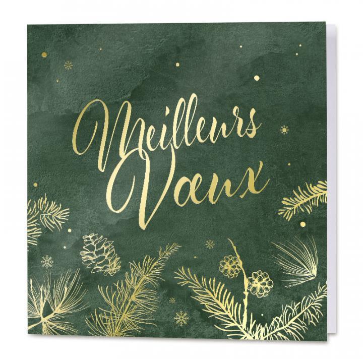 Carte De Vœux Professionnelle Verte Et Meilleurs Vœux Cartes Pour La Vie